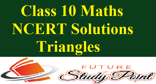 class 10 ncert solutions triangles