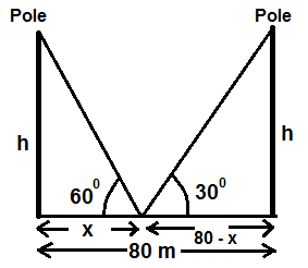 equal poles on either side of road opposite to each other