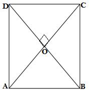 Q5. exercise 8.1 class 9 maths