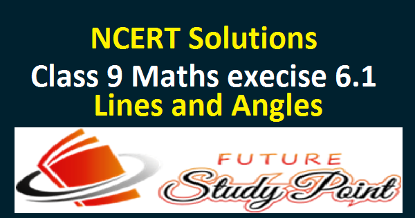 class 9 maths ex.6.1