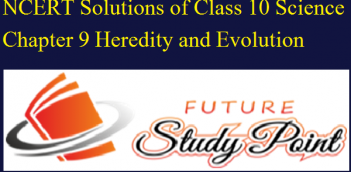 NCERT Solutions of Class 10 Science Chapter 9 Heredity and Evolution