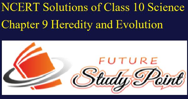 class 10 heredity