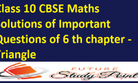 Class 10 Maths Solutions of Important Questions of 6 th chapter -Triangle