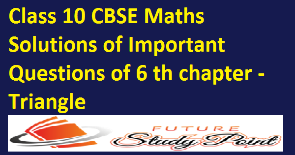 chapter 6 triangles class 10 imp questions