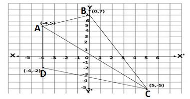 exercise 10.1 class 11 maths
