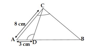 Q30 sample paper of class 10 maths 2021-22