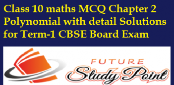 Class 10 maths MCQ Chapter 2 Polynomial with detail Solutions for Term-1 CBSE Board Exam