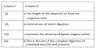 Q16.science sample paper class 10 term 1